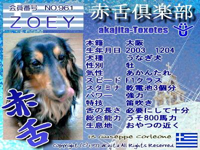 961-zoey