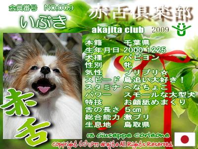satuki2009-009-ibuki