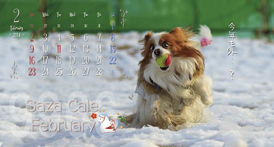 お約束の2月です★☆★ 01