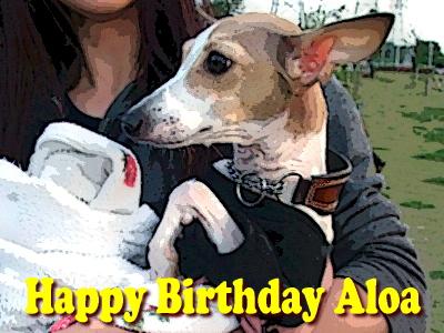 アロアマン、誕生日おめでとう( `ー´)ノ�