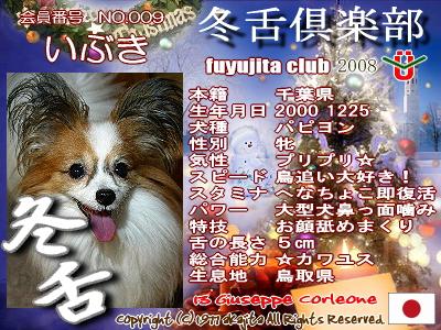009-ibuki-2008fuyu