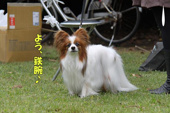 【サザオフ2011】 part1 12
