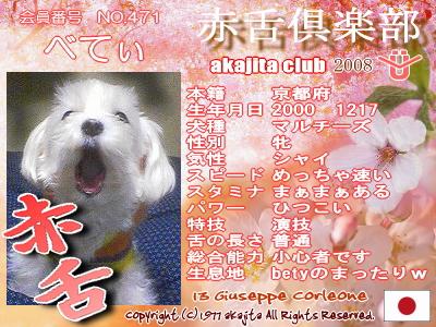 471-bety-2008sakura