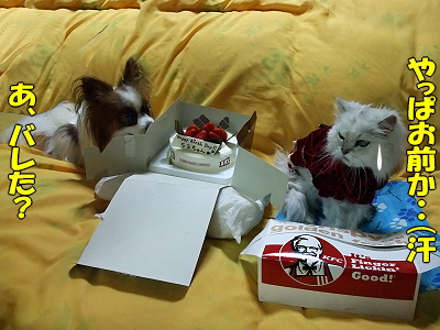 Happy Birthday HERMES 2008�