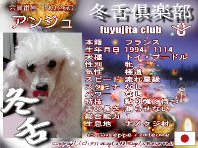 260-ange-fuyu