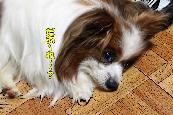 お見舞い★�