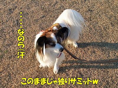 続・瑞穂★ぷち新年会�