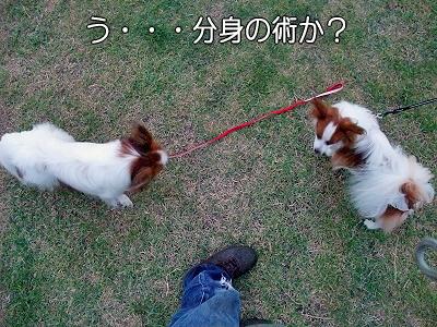 夏休み企画 No10�
