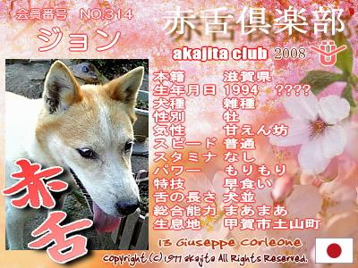 314-john-2008sakura