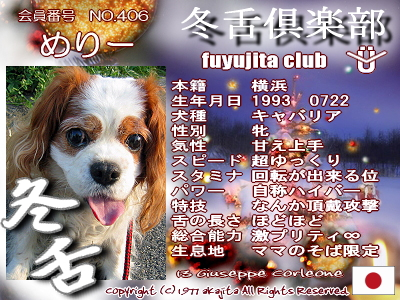 406-mery-fuyu