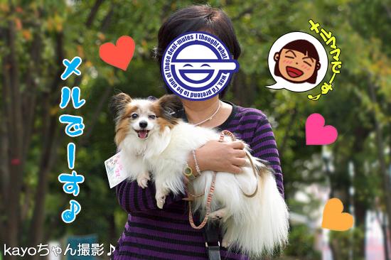 【サザオフ・2014】★その3 自己紹介タ〜イム♪ 15