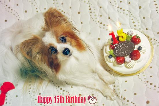 Happy Birthday sazaby 15th 01