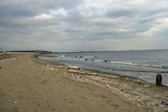 サザビー、砂浜に立つ!! 09