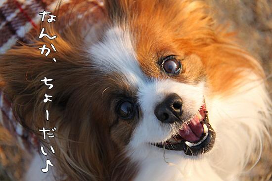 凄まじい笑顔♪ 05