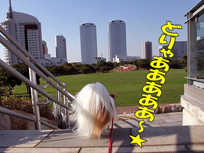 HALLOWEEN☆キタ━━!!!!�