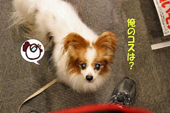 ハローハロウィン★☆★ 04