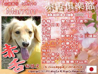 410-marron-2008saku�