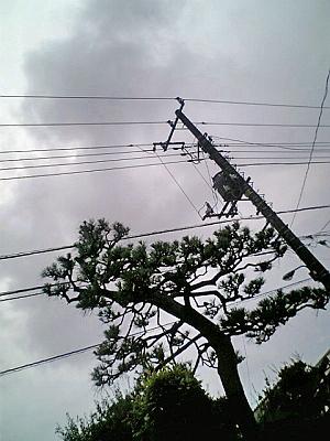 雷が鳴る・・・・
