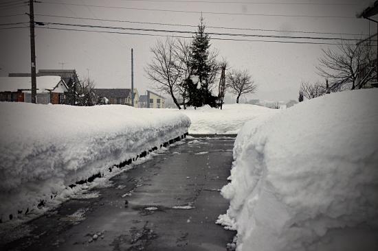 ★☆★雪だけどおめでとう★☆★ 03