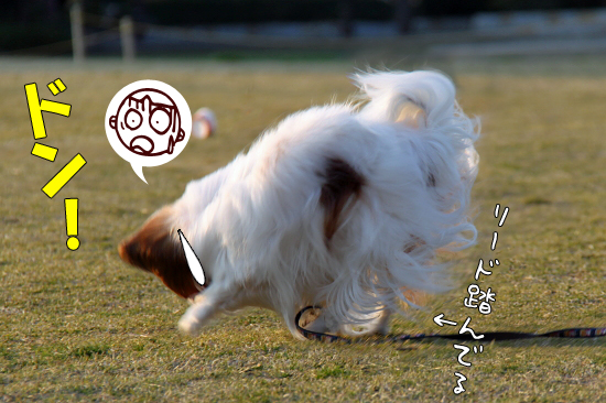 走らせてみた★ 03
