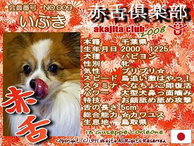 009-ibuki-2008
