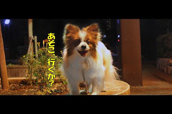 光の馬車★☆★(後篇) 01