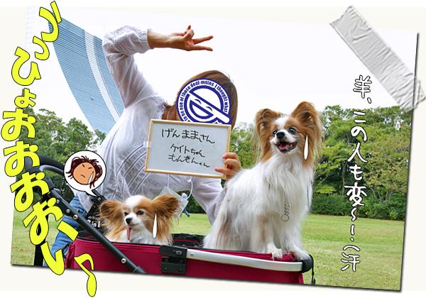 【サザオフ・2014】★その2 巨人VS阪神 10