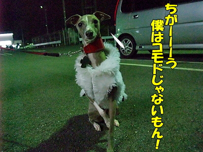 ハンサム★スーツ�