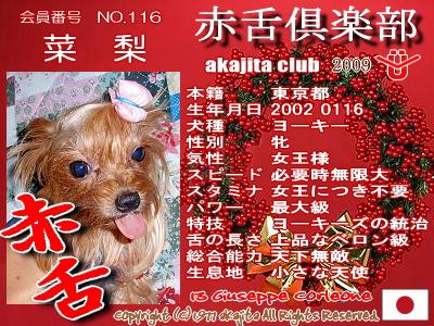 116-nari-2009aka