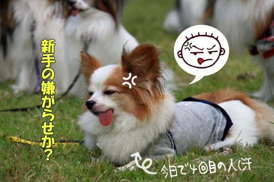 【サザオフ2011】 part5 11