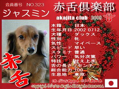 323-jasmine-2009aka