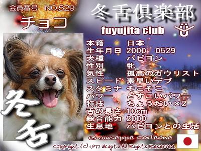 529-choco-fuyu