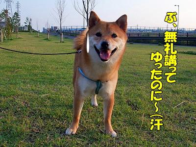 ナツコ攻略法★�
