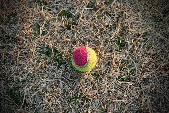 足とボールと公園と・・・ 13