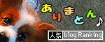 ブログランキング★2009.01.01