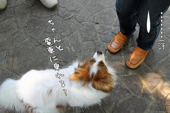 【Wan 2011】(後篇) 15