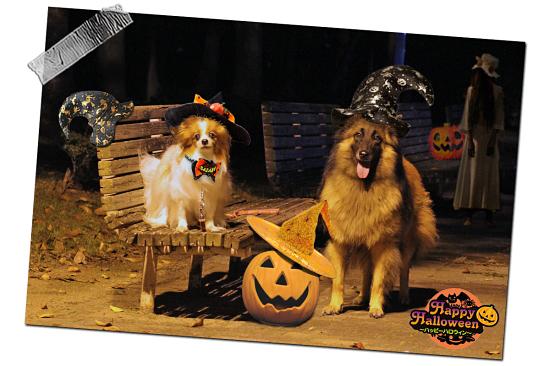 Happy belated Halloween ★☆★ 01
