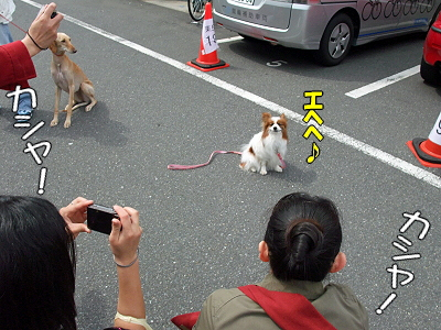 アジアインター2009(中編)28