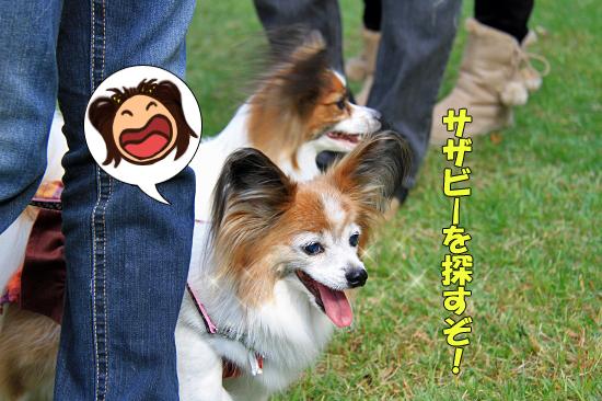 【サザオフ2011】 part6 14