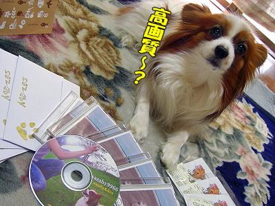赤舌倶楽部・春ヴァージョン当選者発表〜★�