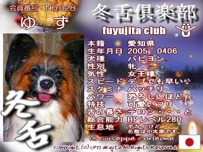 028-yuzu-fuyu