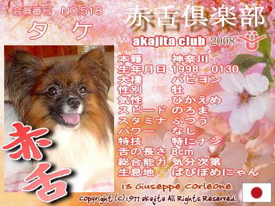 518-take-2008sakura