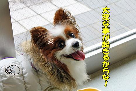 茂原テロ★�