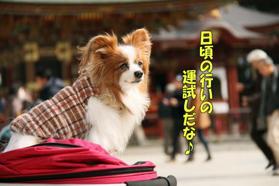 成田山★リベンジ 09