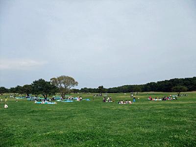 ひたち海浜公園�