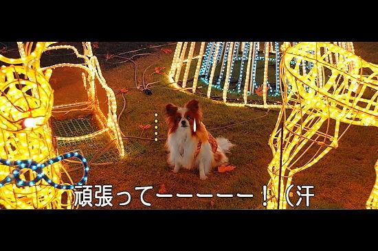 光の馬車★☆★(後篇) 03