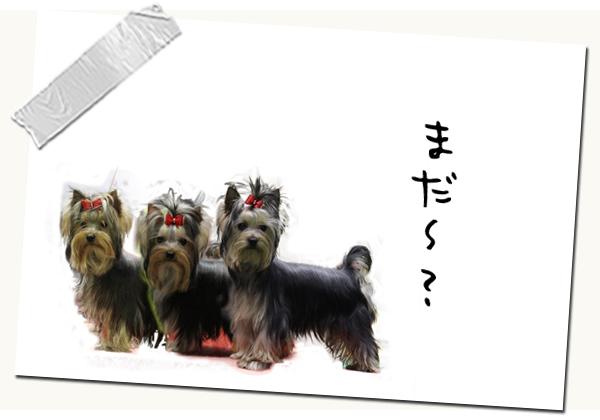 年のまとめ・2014★☆★ 02