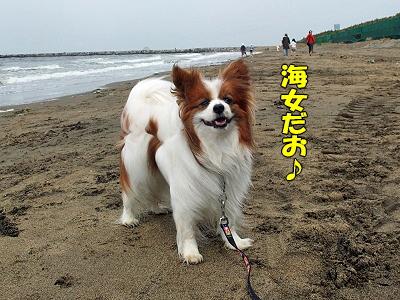 稲毛海浜公園にて・・・�
