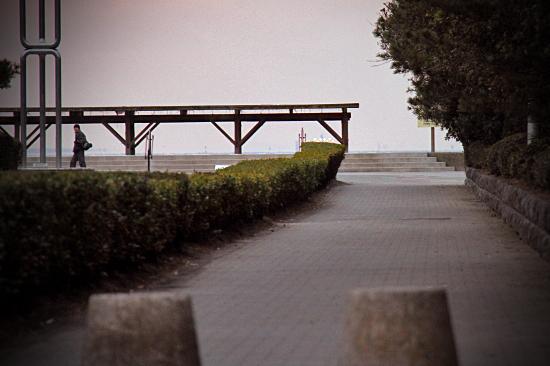 お散歩レビュー(番外篇) 03
