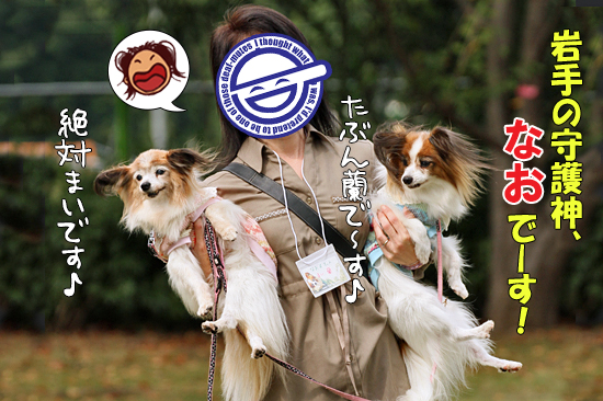 【サザオフ・2014】★その4 急速充電中〜! 11
